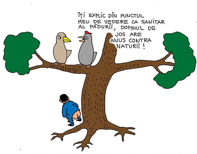 Anus contra naturii