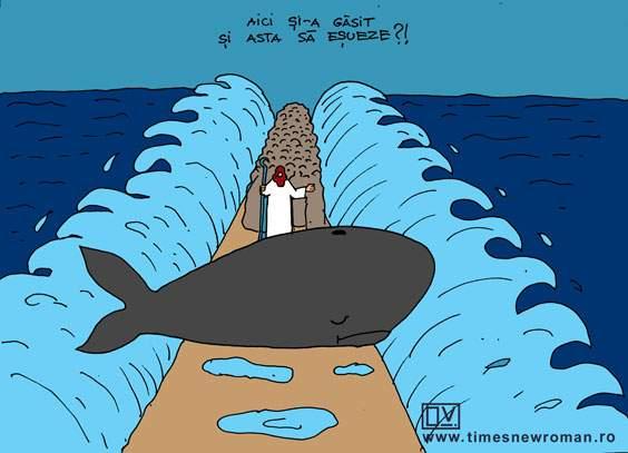Balena pe avarii