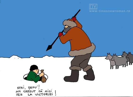 Boschetarul polar
