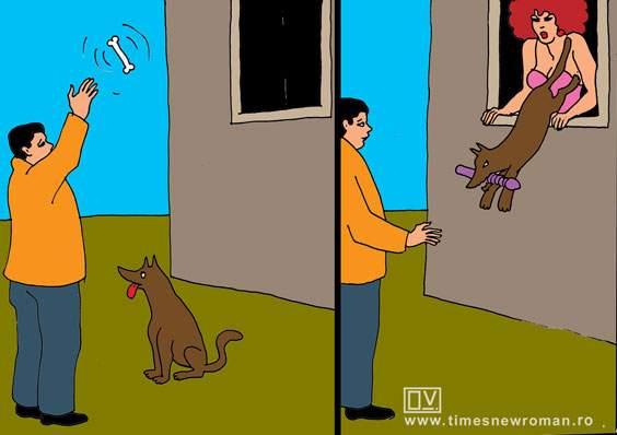 Câinele băgăcios