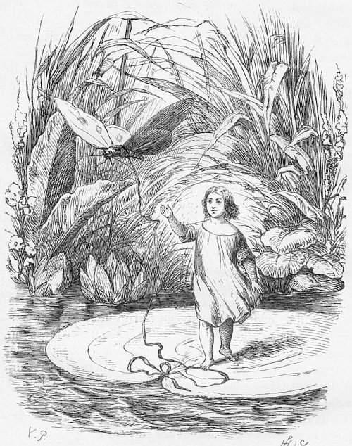 Infama istorie a romantismului (XIX): Poveşti de Andersen
