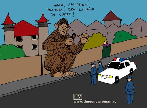 Cazul maimuței rezolvat