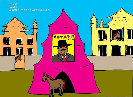 Cort electoral în Strehaia