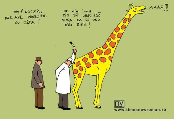 Cu girafa la veterinar