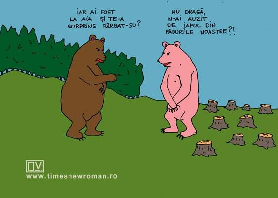 Defrişarea ursului