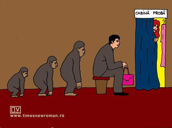 Finalul evoluției