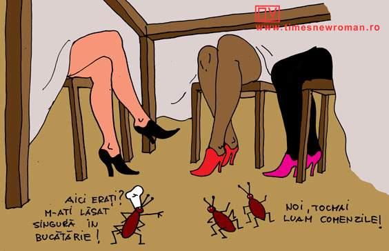 Gândacii ospătari