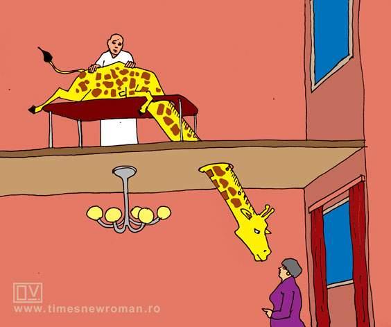 Girafa la masaj
