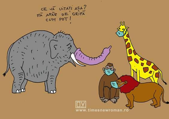 Masca elefantului