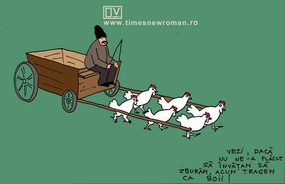 Mintea găinii de pe urmă