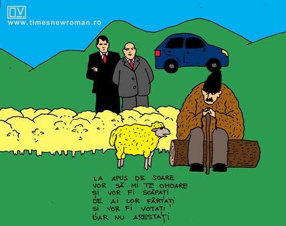 Miorița și parlamentarii