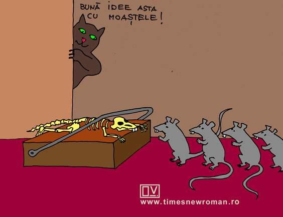 Patriarhul şoarecilor