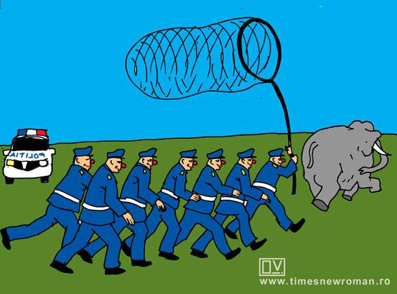 Poliţia din Vâlcea