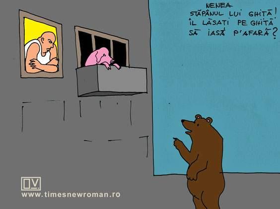 Porcul din balcon