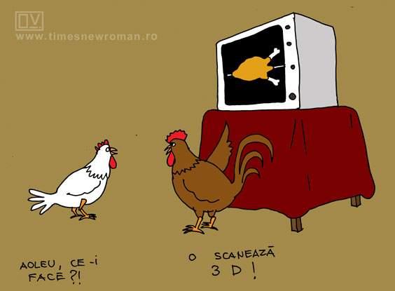 Puiul la RMN