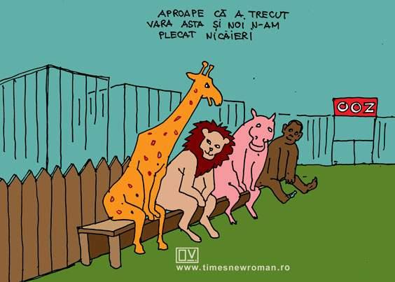 Regrete la zoo