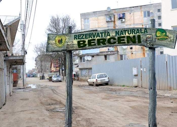 Pentru a proteja maidanezii, Piedone va declara sectorul 4 rezervaţie naturală!