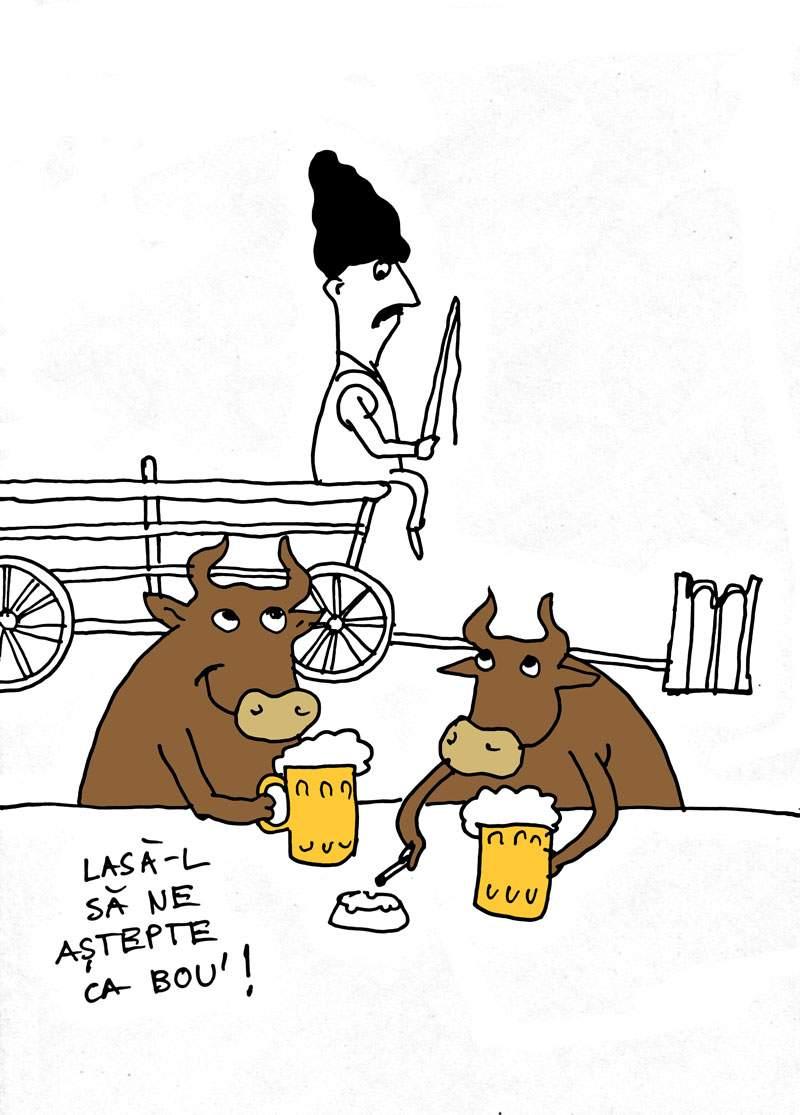 Te aşteaptă un bou