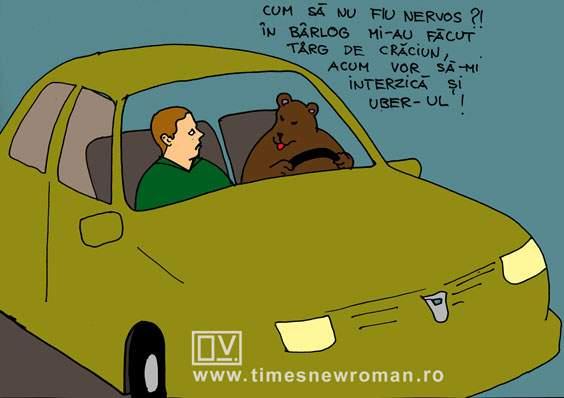 Un urs revoltat