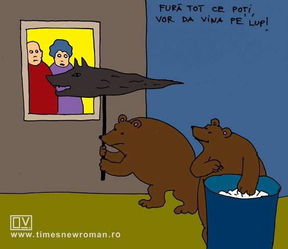 Ursul dacic