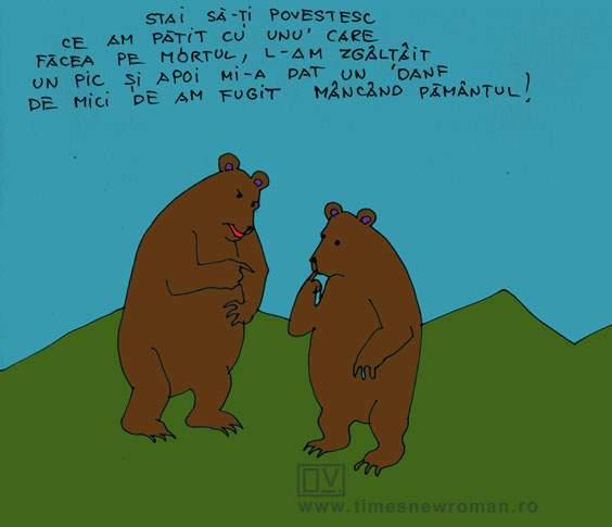 Ursul ghinionist