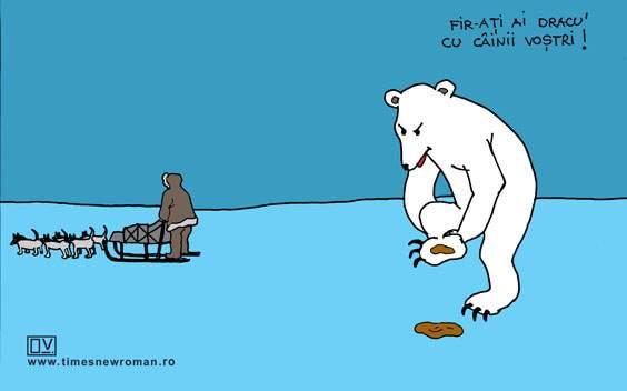 Ursul norocos