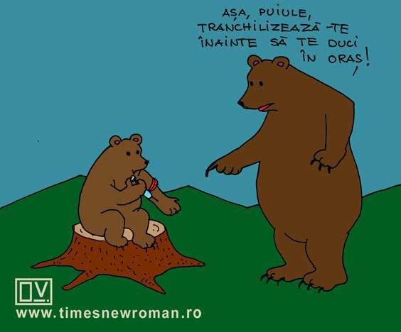 Ursul precaut