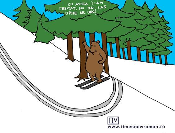 Ursul șmecher