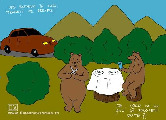 User name Teddy Bear