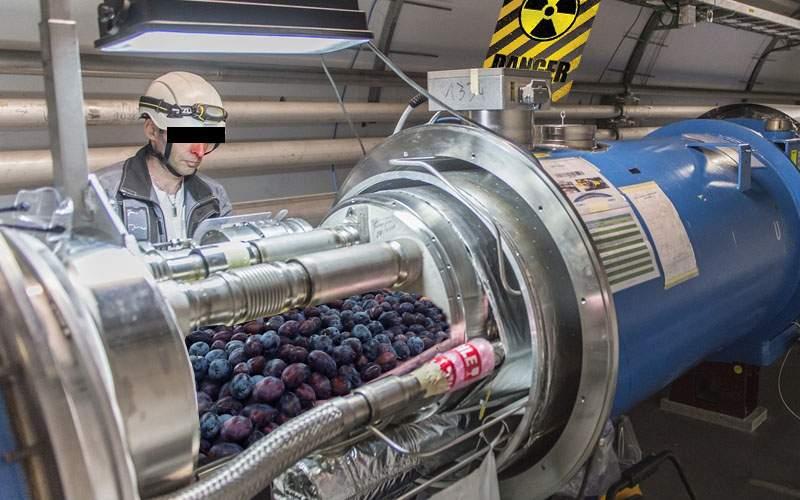 A început construcția acceleratorului de prune de la Zalău, care va putea face țuică în 6 ore