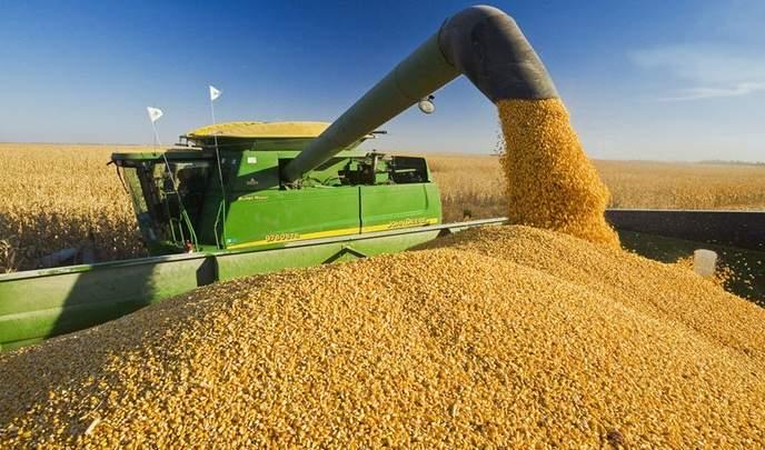 10 lucruri despre producţiile record din agricultură