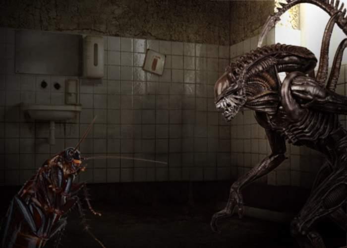 Rază de speranţă pentru Sănătate: ALIEN Vs. Predator 3 se filmează la Spitalul Judeţean Ploieşti