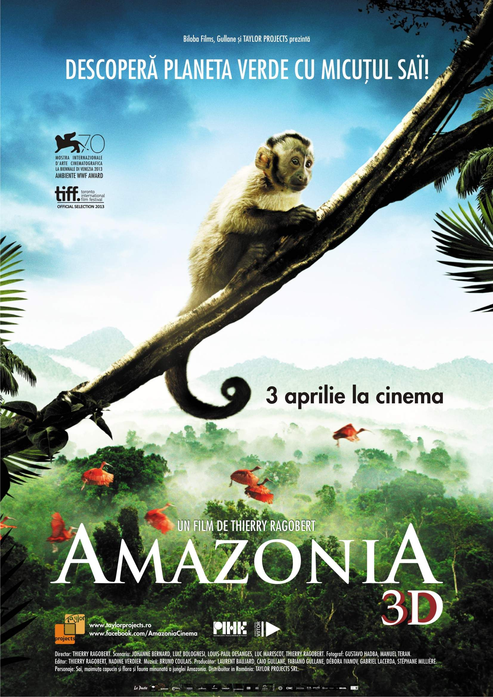 Amazonia 3D (2013) – Welcome to the jungle