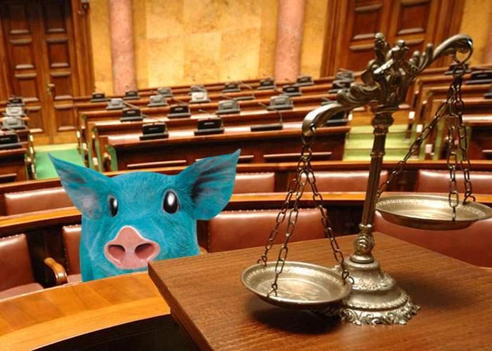 Ignat amânat la infinit! Un porc și-a dat stăpânul în judecată şi procesul va dura minim 15 ani