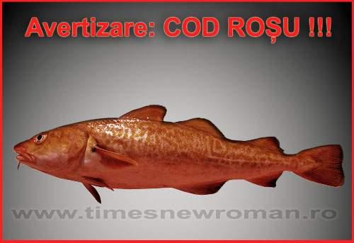 Alertă generală: cod roșu în Marea Neagră