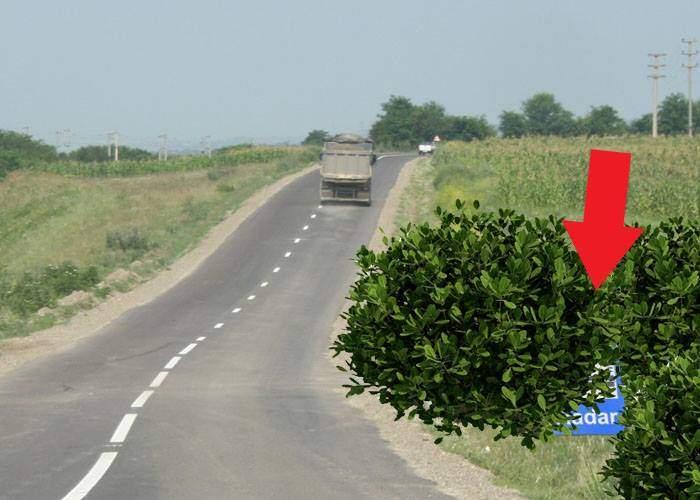 Şofer, amendat după ce s-a pişat într-un tufiş unde pândea un echipaj cu radarul