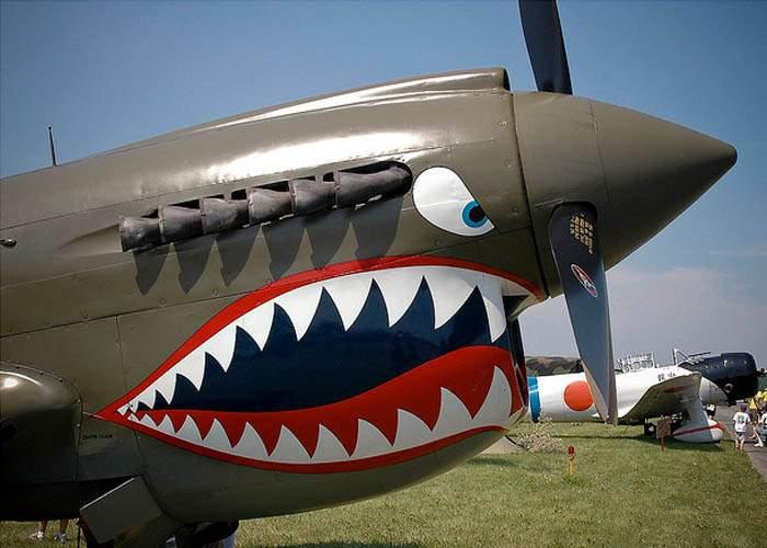 Luptele între avioane vor fi interzise de Asociaţia pentru Drepturile Avioanelor
