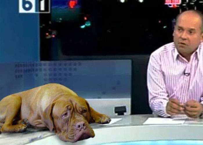 Radu Banciu a inventat o jignire nouă, pe care o aud doar câinii