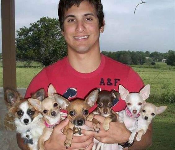 Reparație morală! Bărbații cu câini mici vor primi un voucher de 5 lei de la primărie, spor de rușine