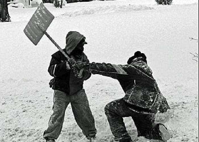 15 lucruri care sigur te vor surprinde despre iarnă
