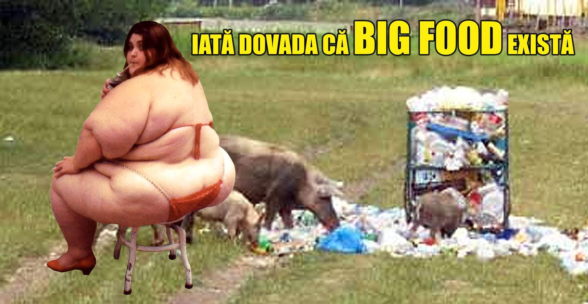 Dovada! Big Food există!