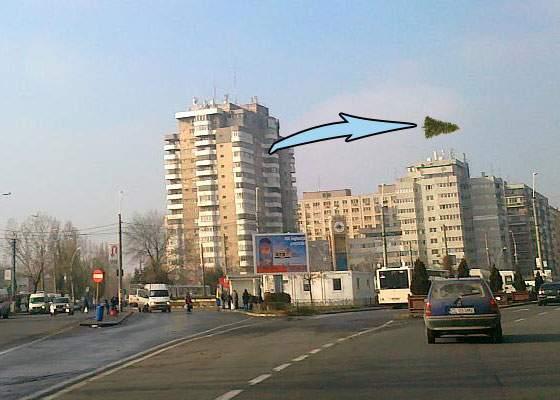 Un nou record! Un locuitor din Pantelimon a aruncat bradul de pe geam 174 de metri