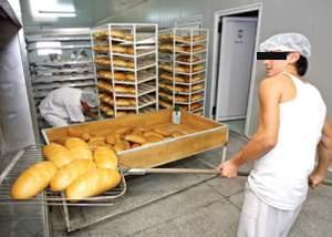 Comercianţii de rumeguş aplaudă reducerea TVA la pâine