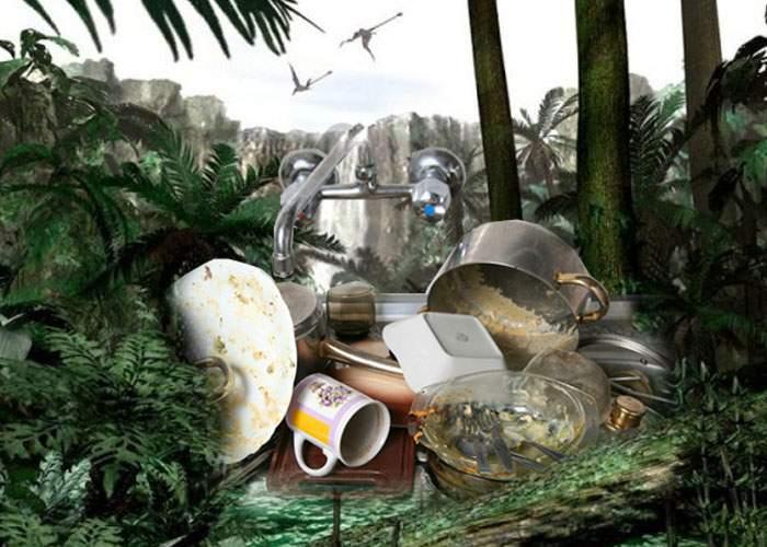 După Văcăreşti, statul declară parc natural şi bucătăria unui burlac care n-a spălat vasele o lună