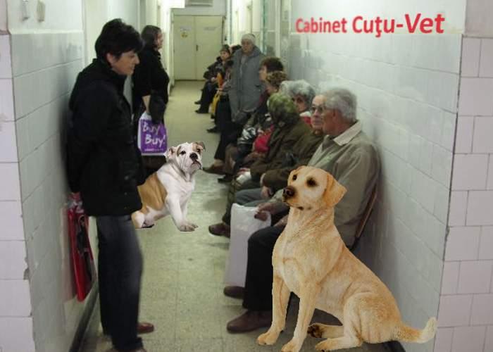 S-a găsit soluţia la aglomeraţia din spitale: Cazurile uşoare vor fi trimise la veterinari!