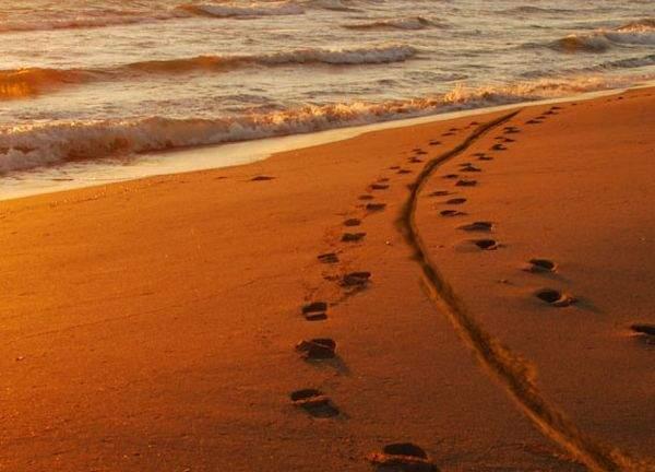 Foto! A fost Cabral pe plajă la nudişti? Există un detaliu care îl dă de gol