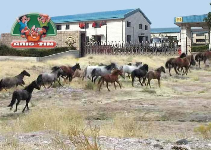 După succesul cu Vodafone, caii de la Letea vor avea ocazia să joace într-o reclamă la salam