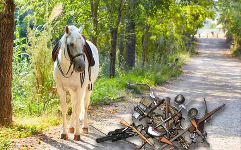 Pistoalele, pumnalele, caii şi flintele haiducilor, găsite într-o pădure din Ilfov
