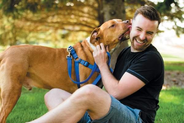Un patron din IT şi-a dresat câinele să miroasă programatori, ca să-i oferteze mai ușor