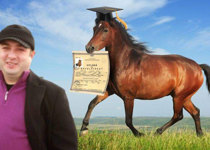 Paranghelie în Strehaia! Calul lui Leo a luat BAC-ul cu media 8,30!